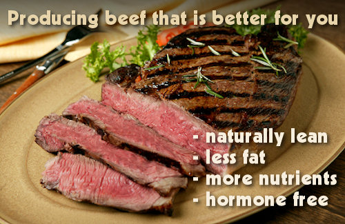 Our Beef is Better for You